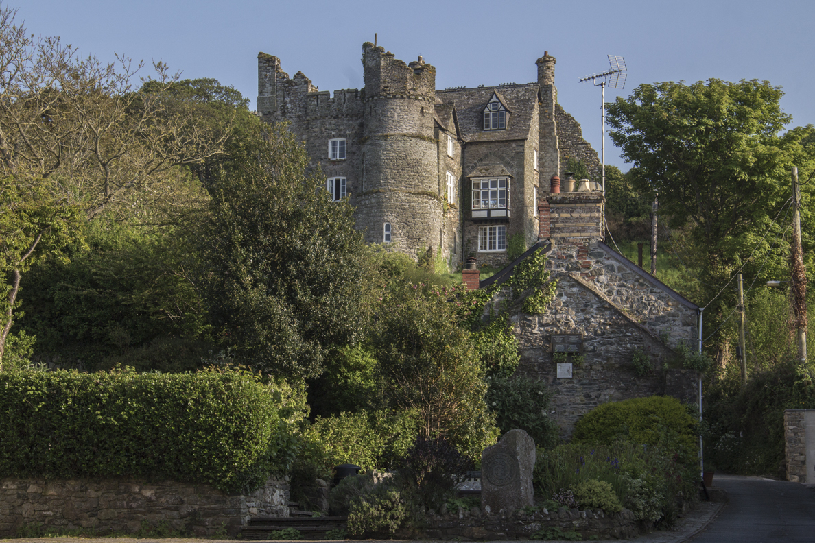 The castle in Newport, Pembrokeshire, Wales 8628