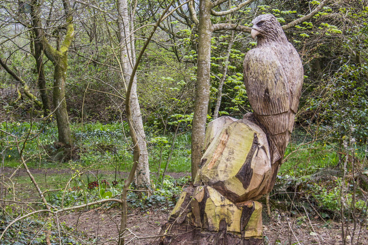 Wood carving at Allen's view on the Coastal Path above Tenby Pembrokeshire, Wales  6437